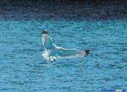 0080032 - Location - Greece, Ionian Islands, Antipaxoi.jpg