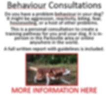 behaviour consultations.JPG
