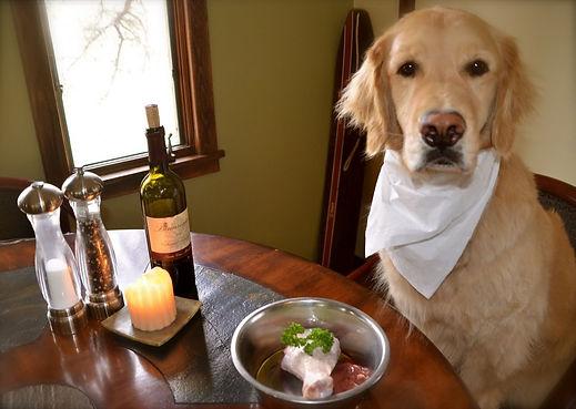dog with food.jpg