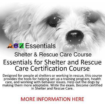 shelter more information raw.JPG