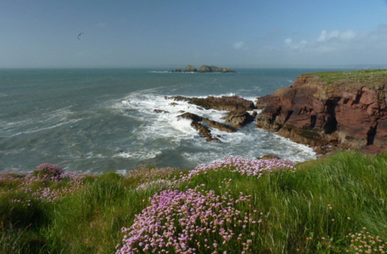 St-Brides-Bay.jpg