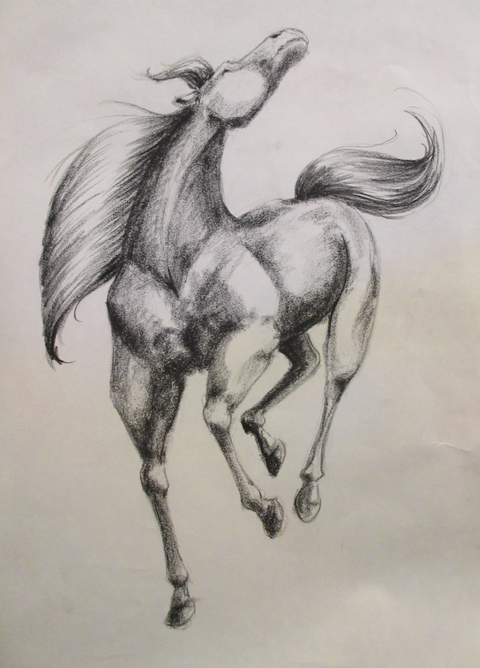 Cheval - 2013