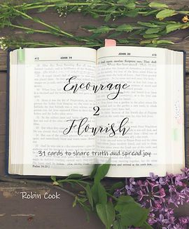 Encourage 2 Flourish cover from phone.jp