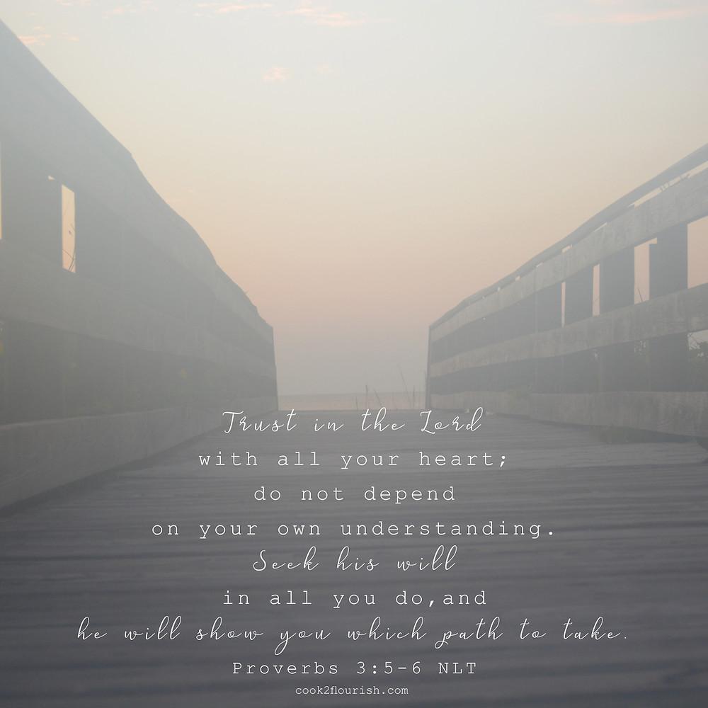 Proverbs 3:5-6 NLT