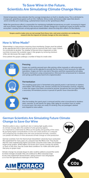 To -Save-Wine-in-the-Future-Scientists-A