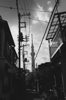 tokyo7.jpg