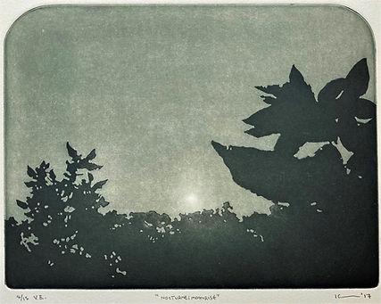 Nocturne Print 1.5.jpg