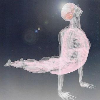 yoga%20asana_edited.jpg