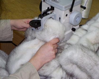 fur-repair-1.png