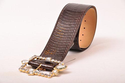 Snake Brown Belt