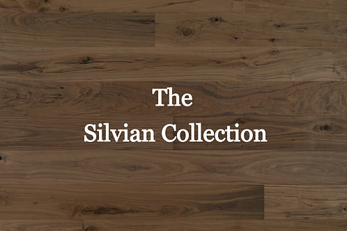 The Silvian Collection