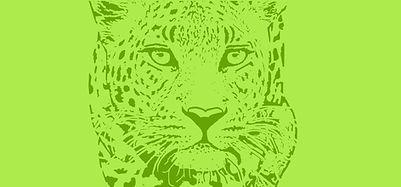 Leopard cover green.jpg