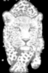 leopardiconFINAL2.png