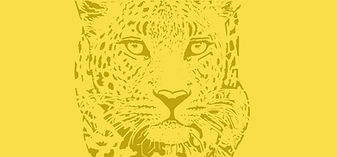 Leopard cover yellow.jpg