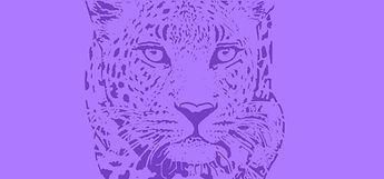 Leopard coverpruple.jpg