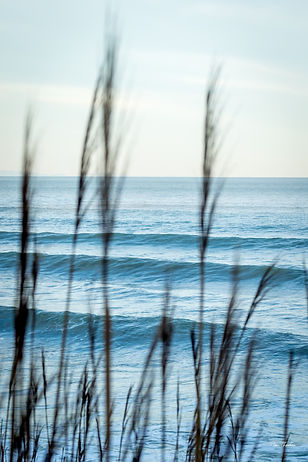 Morning Color-8844.jpg
