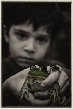 Luca_frog