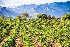 Herencia-Mountains.jpg