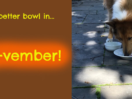A better bowl of pet food!