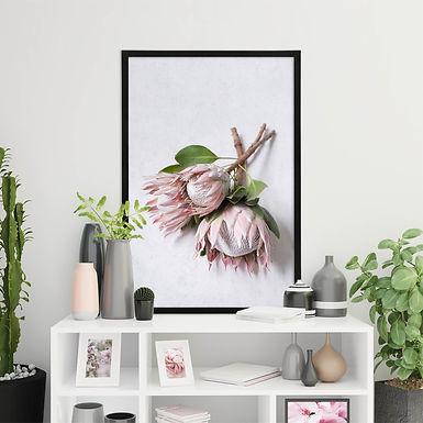 Blush Pink King Protea Wall Art | Single Print 7