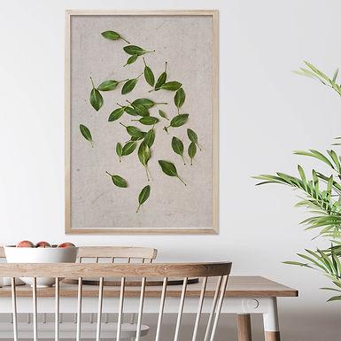 White King Protea Wall Art | Single Print 6