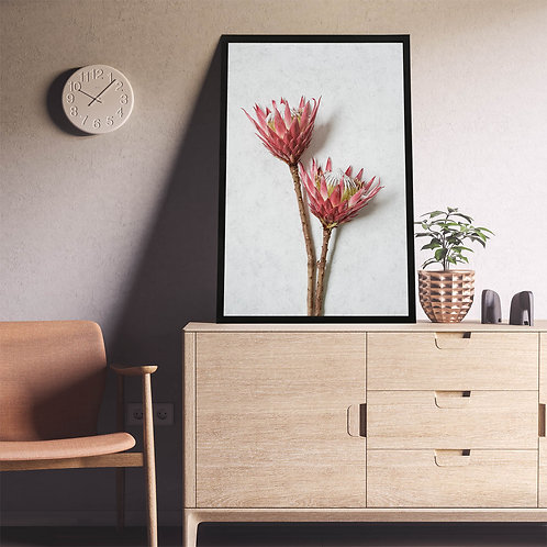 Red King Protea Wall Art | Single Print 6