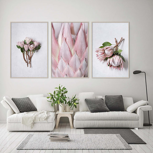 protea wall art print home decor