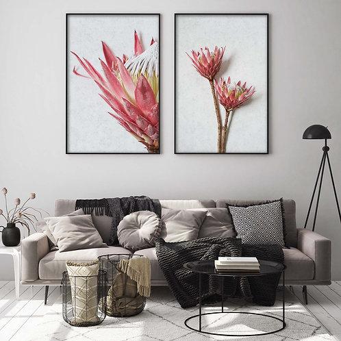 king protea wall art print set, home decor