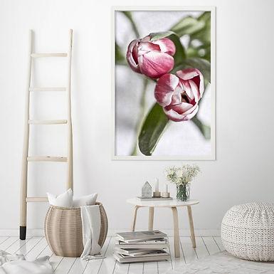 Pink Tulips Wall Art   Single Print 7