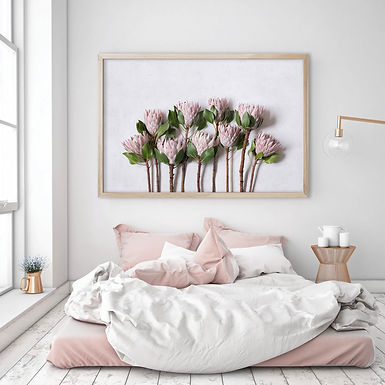 Blush Pink King Protea Wall Art   Single Print 1