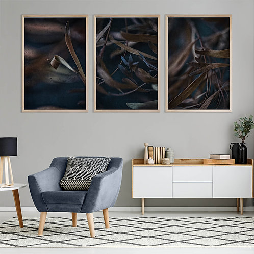 Moody Leaves Print Set | Collection 3