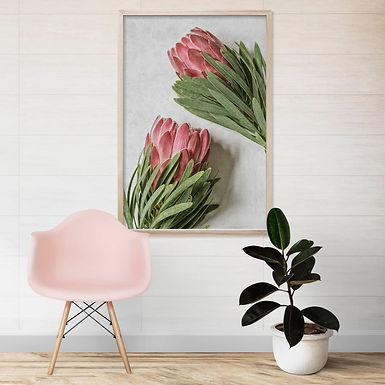 Venus Protea Wall Art | Single Print 3