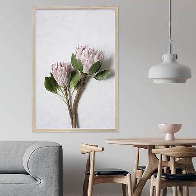 Blush Pink King Protea Wall Art | Single Print 5
