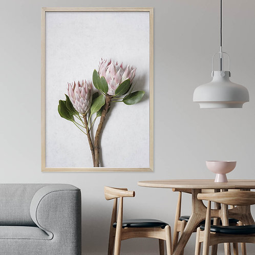 Blush Pink King Protea Wall Art | Single Print 5