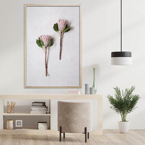 Blush Pink King Protea Wall Art | Single Print 8