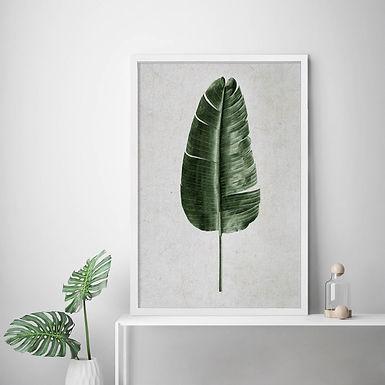 Tropical Leaves Wall Art   Single Print 4