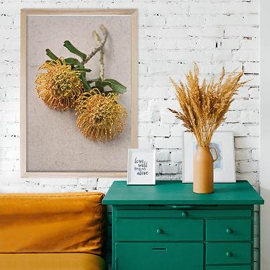 Fynbos Wall Art   Single Print 2