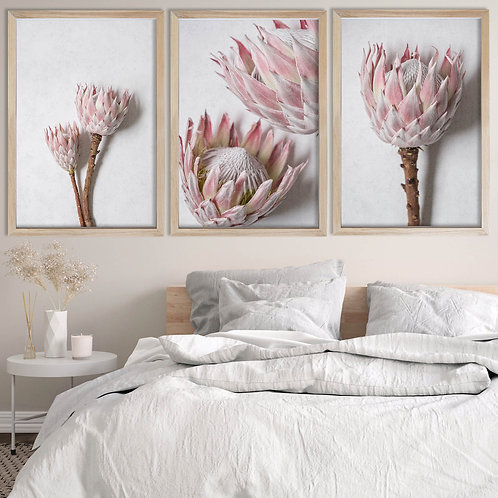 Blush Pink King Protea Wall Art Print Set | Collection 6