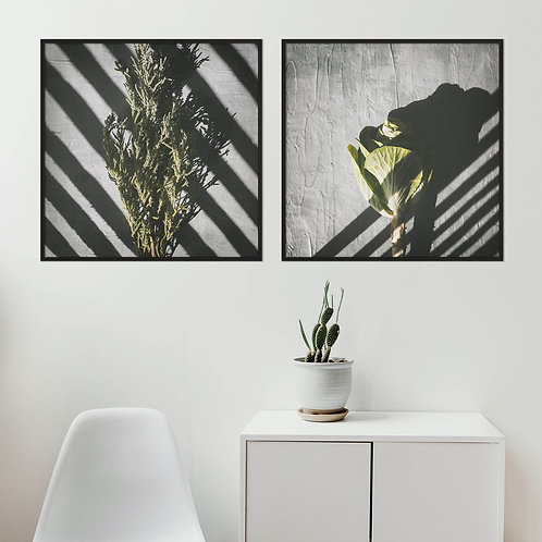 Playing With Shadows Print Set | Collection 4