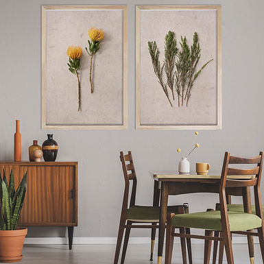 Fynbos Print Set   Collection 1