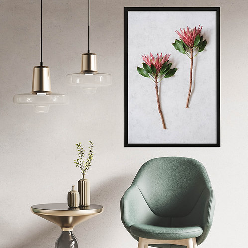 Red King Protea Wall Art | Single Print 5