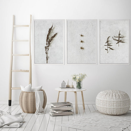 Dried Botanicals Wall Art Print Set   Collection 4