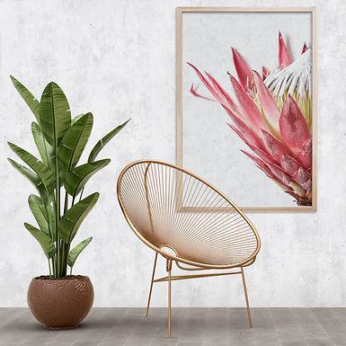 Red King Protea Wall Art | Single Print 10