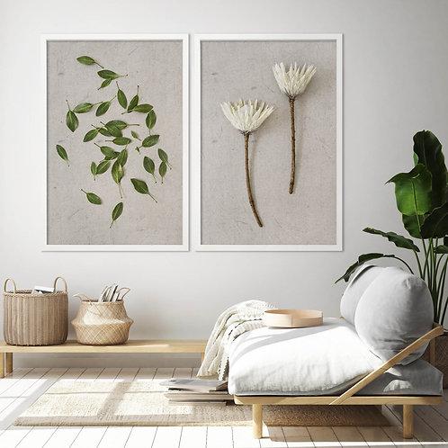 White King Protea Wall Art Print Set | Collection 6