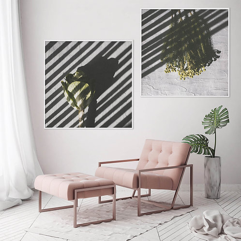 Playing With Shadows Print Set | Collection 5