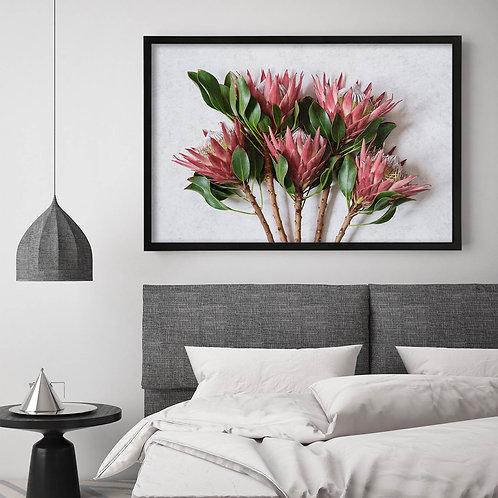 Red King Protea Wall Art   Single Print 2