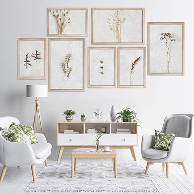 Dried Botanicals Wall Art Print Set   Collection 5