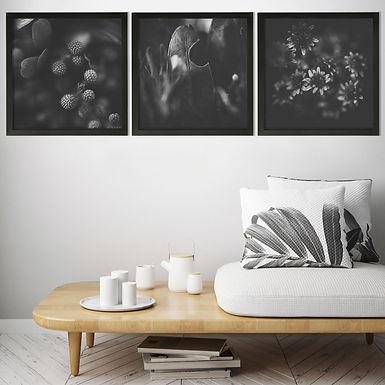 Moody Florals Black & White Print Set