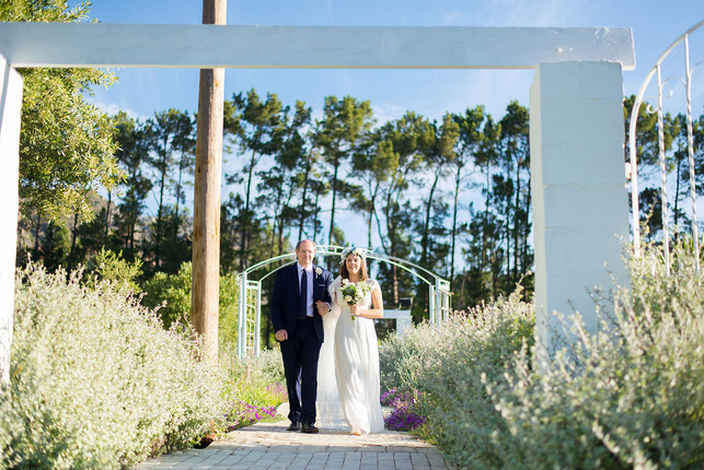 M+A Wedding - 00127.jpg