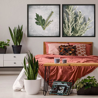 Green & Grey Print Set | Collection 4